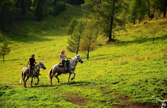 Horse riding in the mountains of Sochi